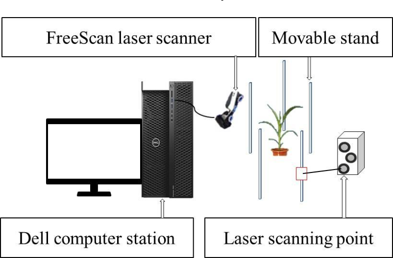 Figure 1 for Stem-leaf segmentation and phenotypic trait extraction of maize shoots from three-dimensional point cloud