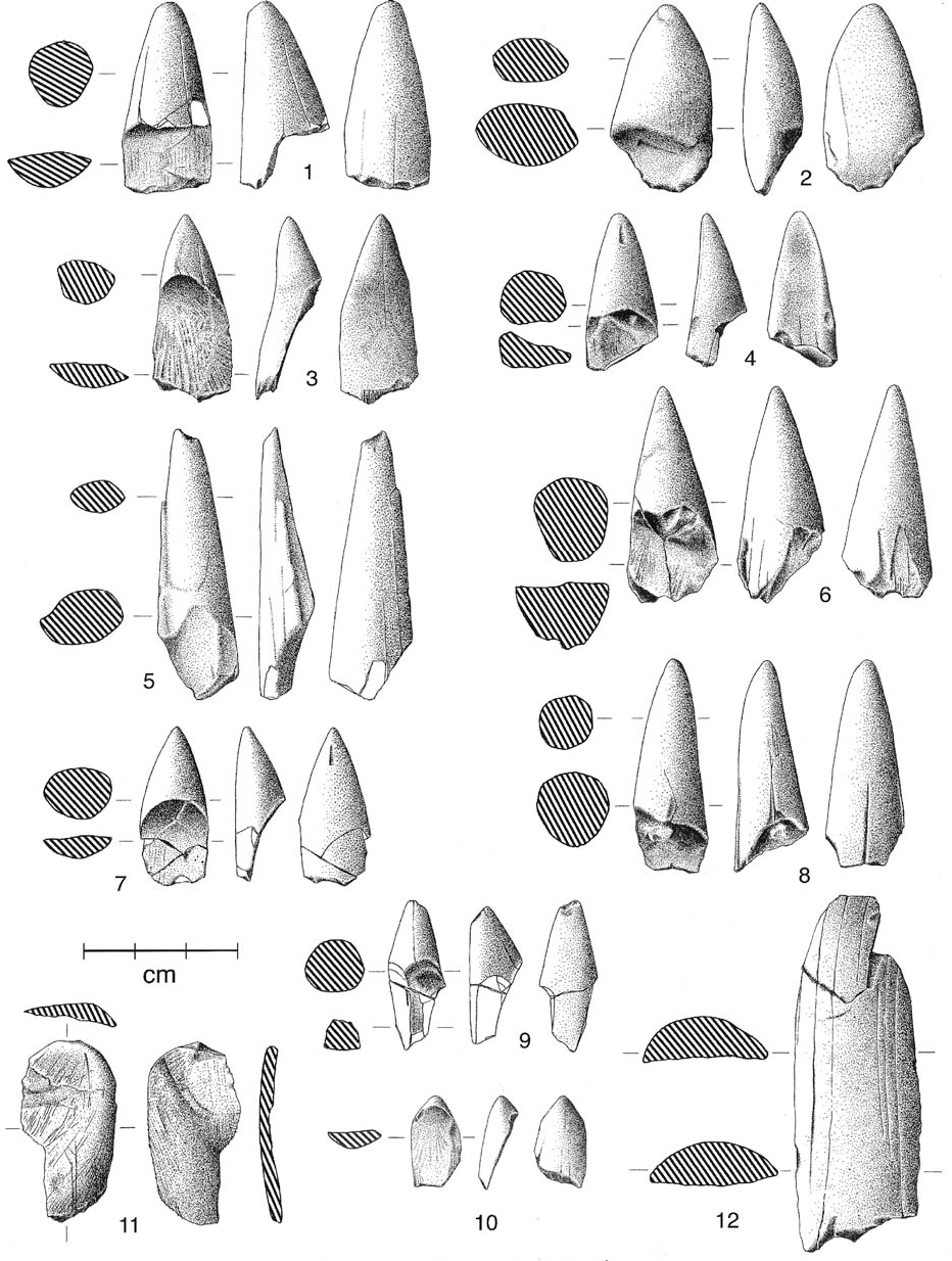 Fig. 15. Ivory points (1–10) and ivory flakes (11–12) from the new Ambrona excavations, layers AS3 (4,8) and AS4 (all others). Eight of the ivory points are abraded or very abraded, one is fresh (3) and the other is fresh to slightly abraded (7). The two ivory flakes are unabraded.