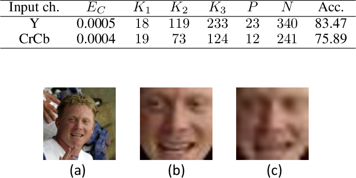 Figure 2 for Low-Resolution Face Recognition In Resource-Constrained Environments