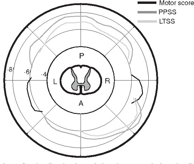 Figure 3 From Independent Spinal Cord Atrophy Measures Correlate To