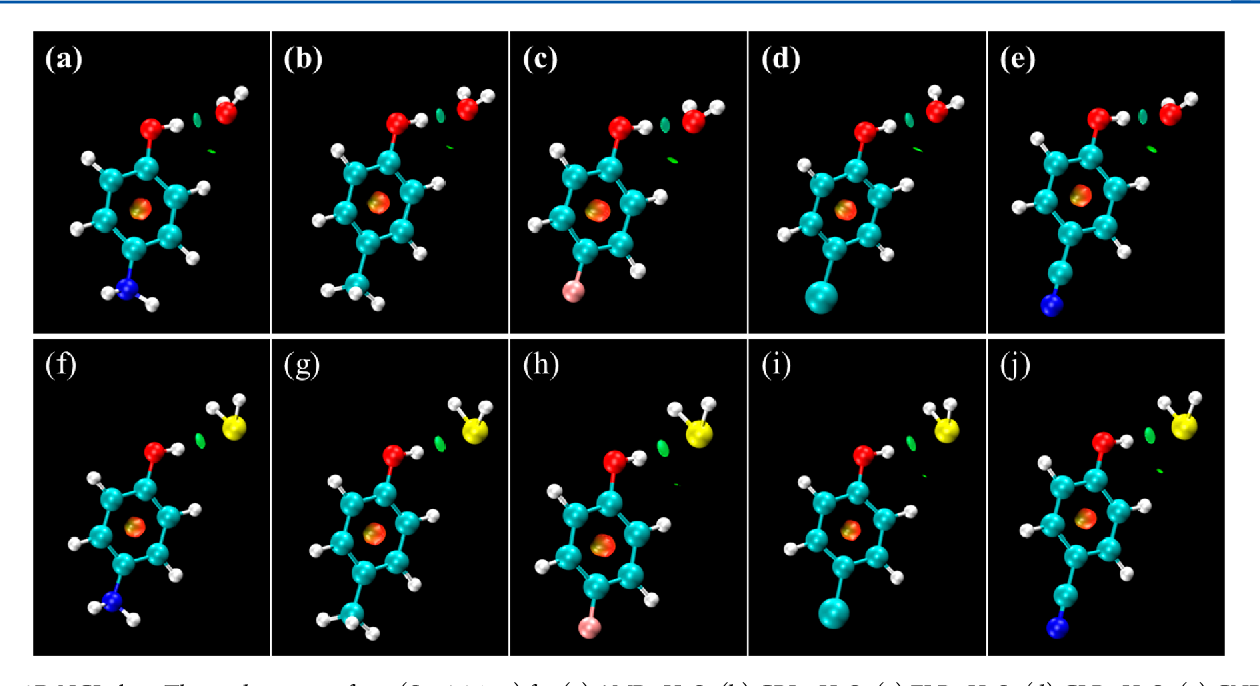 Figure 5. 3D NCI plots. The gradient isosurfaces (S = 0.35 au) for (a) AMP−H2O, (b) CRL−H2O, (c) FLP−H2O, (d) CLP−H2O, (e) CNP−H2O, (f) AMP−H2S, (g) CRL−H2S, (h) FLP−H2S, (i) CLP−H2S, and (j) CNP−H2S. The data was obtained by evaluating MP2/aug-cc-pVDZ density.