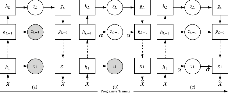 Figure 1 for Progressive Learning and Disentanglement of Hierarchical Representations