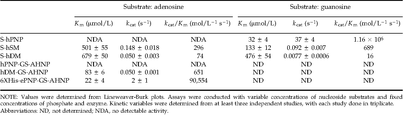 Table 1. Kinetic constants of engineered PNP fusion proteins for adenosine and guanosine