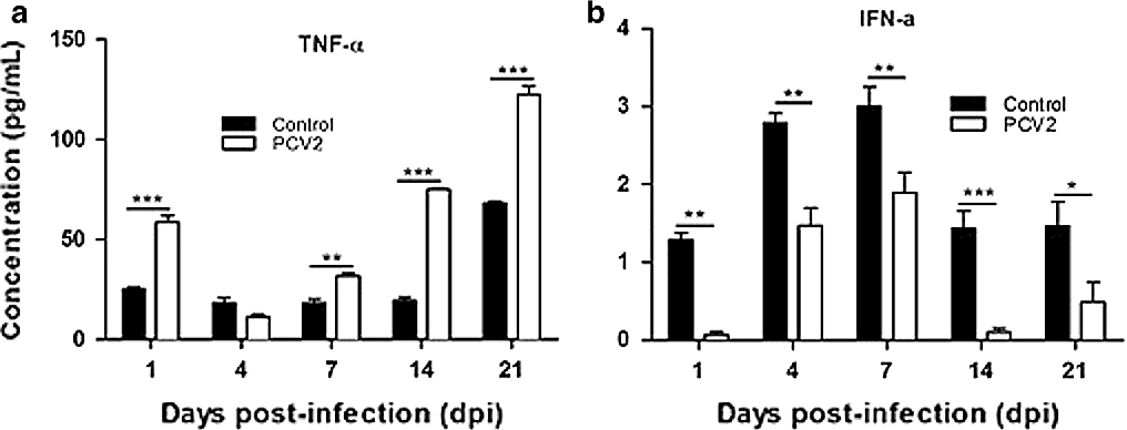 Figure 4 from Effect of porcine circovirus type 2 (PCV2) on the