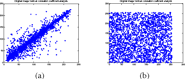 Figure 7. Correlation between two vertically adjacent pixels: (a) in the plain image, (b) in the encrypted image