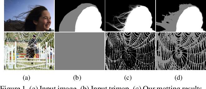 Figure 1 for Disentangled Image Matting