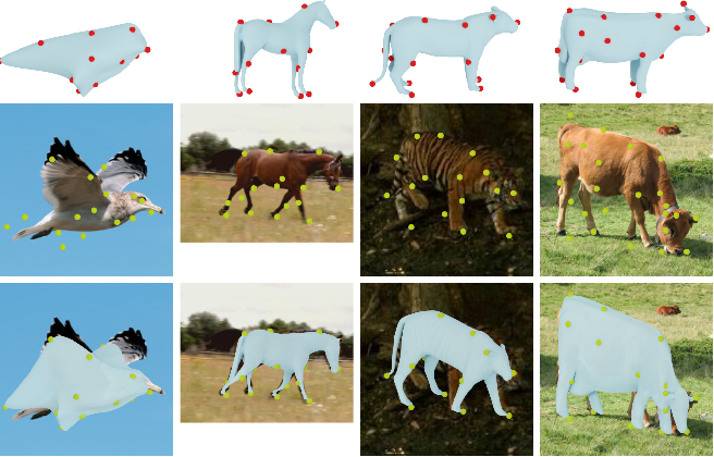 Figure 1 for Learning monocular 3D reconstruction of articulated categories from motion