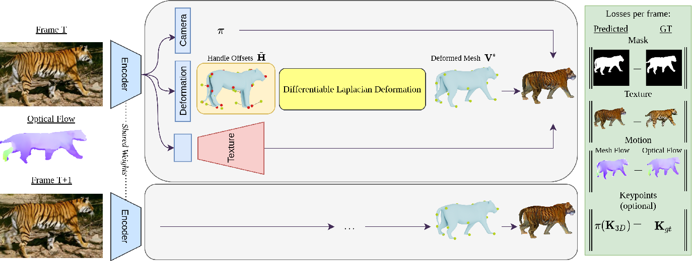 Figure 3 for Learning monocular 3D reconstruction of articulated categories from motion