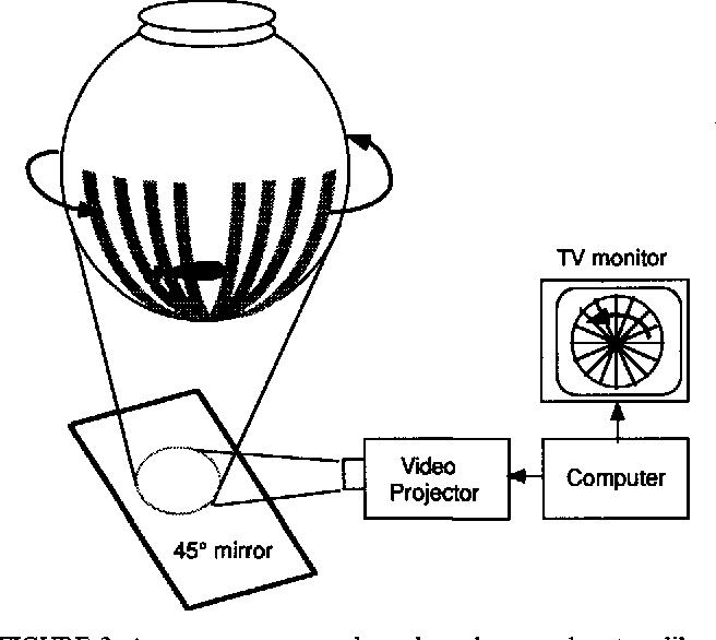 Optomotor test for wavelength sensitivity in guppyfish