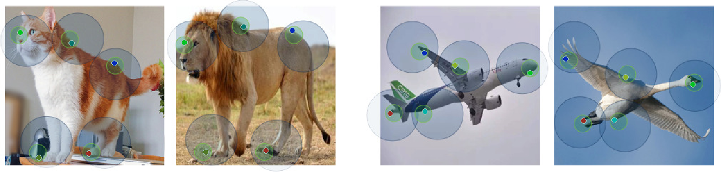 Figure 1 for Neural Best-Buddies: Sparse Cross-Domain Correspondence