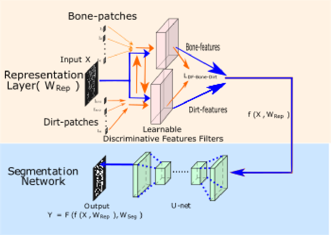 Figure 3 for Multi-Class Micro-CT Image Segmentation Using Sparse Regularized Deep Networks