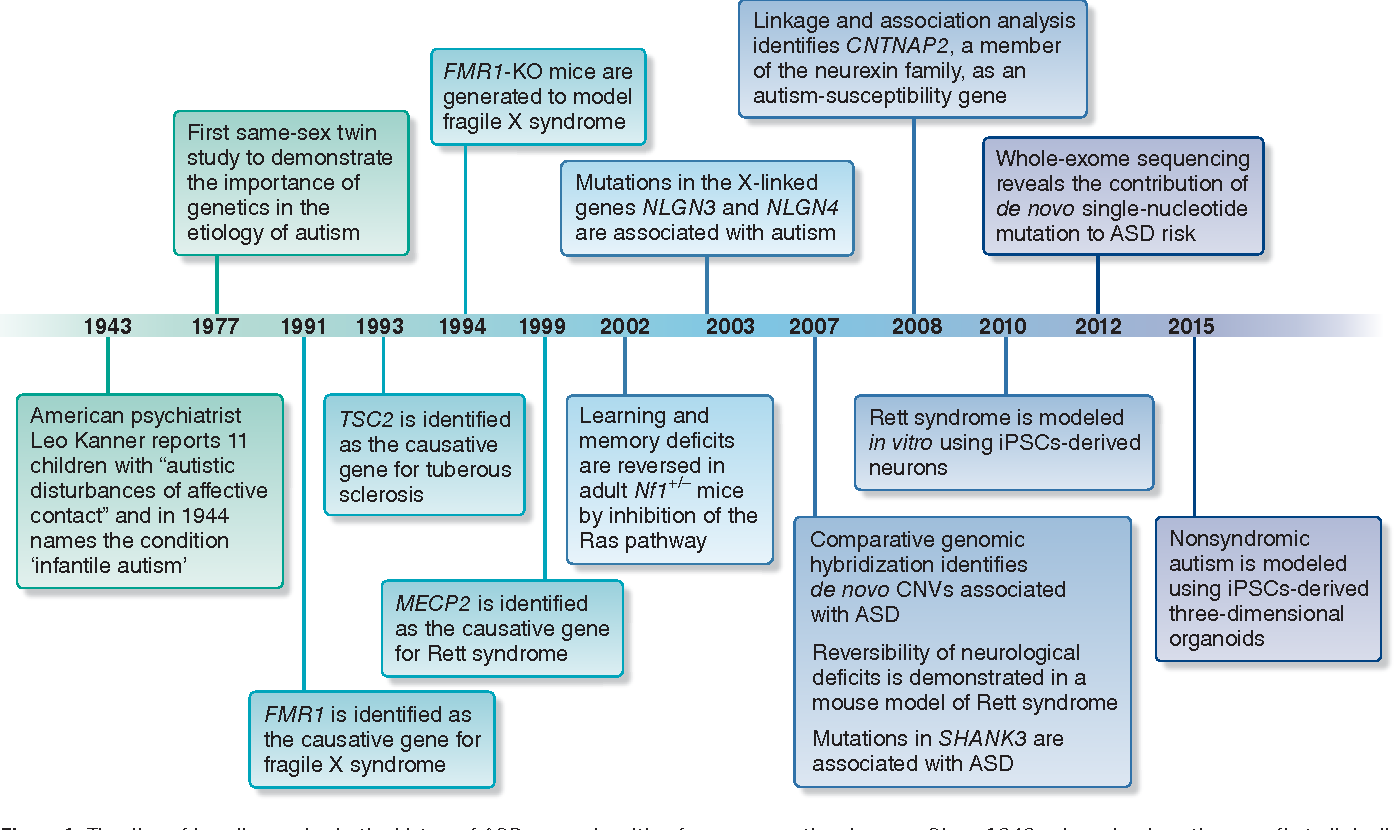 The Lessons Of Autism History >> Figure 1 From Lessons Learned From Studying Syndromic Autism