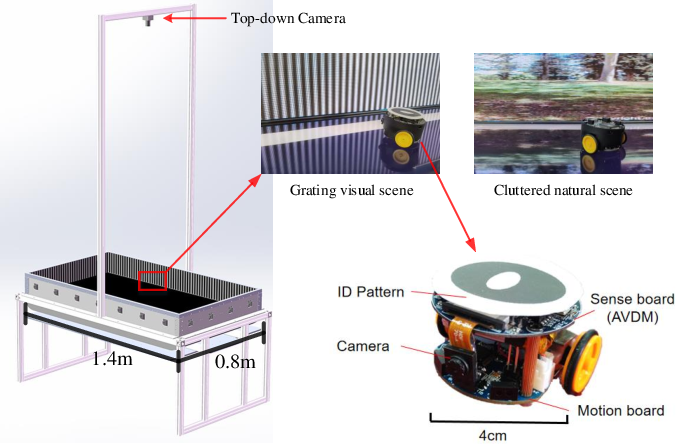 Figure 2 for Profiling Visual Dynamic Complexity Using a Bio-Robotic Approach