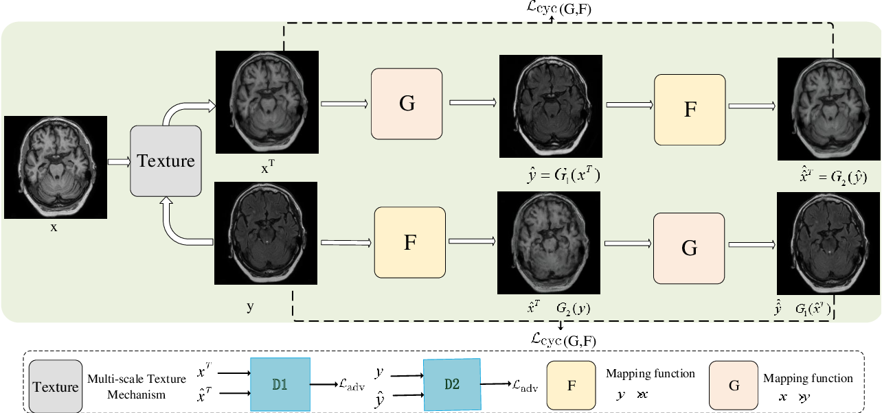 Figure 1 for Multi-Texture GAN: Exploring the Multi-Scale Texture Translation for Brain MR Images