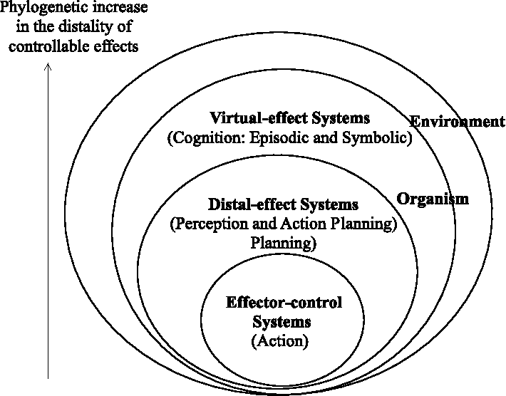 Fig. 4. Event-control hierarchy. The traditional psychological functions of action, perception and cognition are modeled as synergistically coupled levels of event control, as opposed to separate functions of a single control loop (i.e., Fig. 1). This adds a third loop (i.e., the Virtual-effect systems) to the two loops depicted in Fig. 1 (bottom). This model takes into account recently discovered common resources between perception and action-planning, and also illustrates the constraining relationship between planning and action, as opposed to the causal relationship assumed in traditional models. According to this model, a first-person sense of self is fluid, and can find itself attached to different levels of event control at different moments.