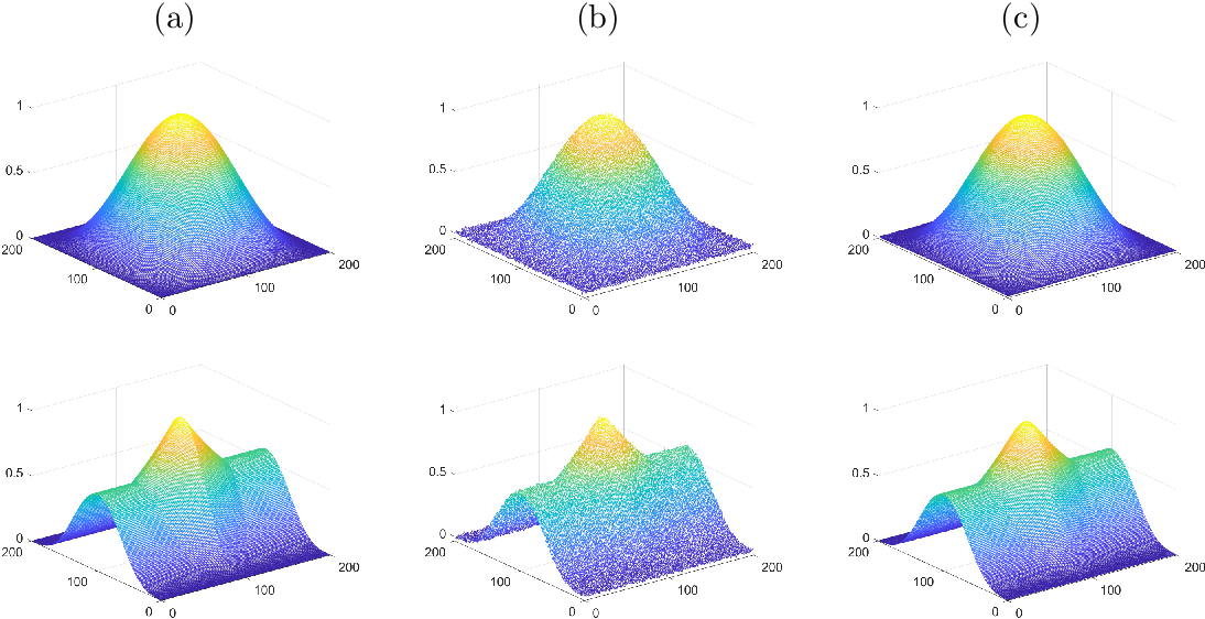 Figure 1 for An Operator-Splitting Method for the Gaussian Curvature Regularization Model with Applications in Surface Smoothing and Imaging