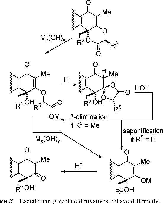 Figure 3 From Total Synthesis Of Rishirilide B Development And