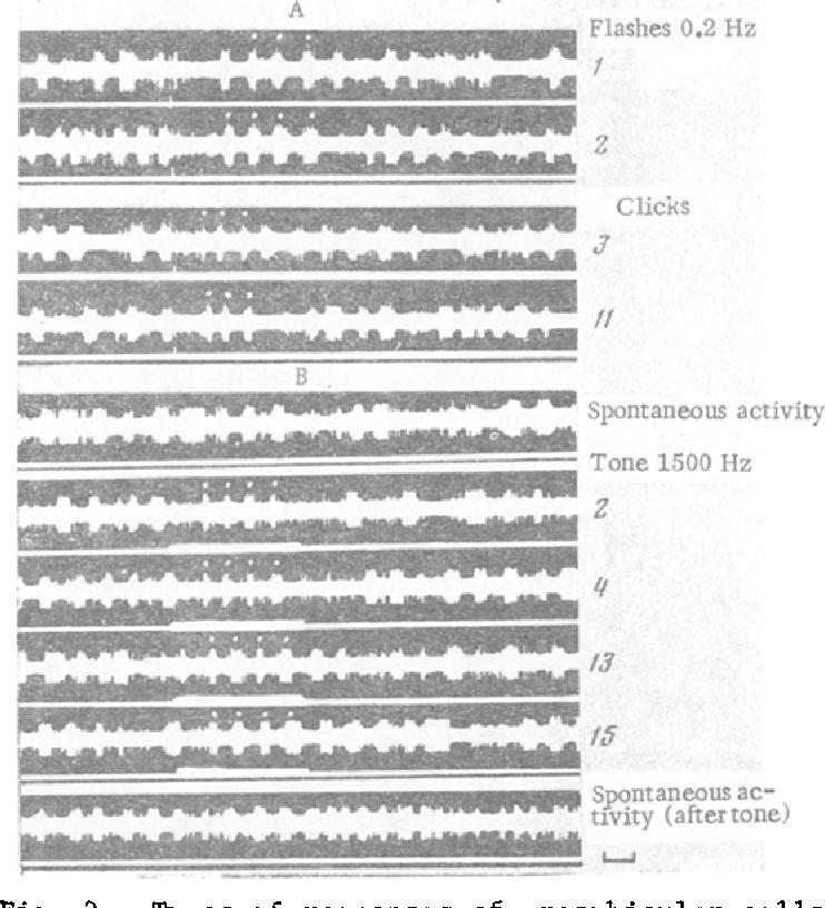 cell unit activity