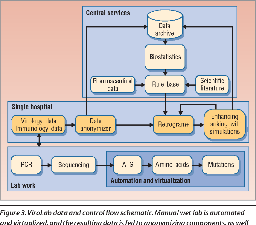 From molecule to man: Decision support in individualized E