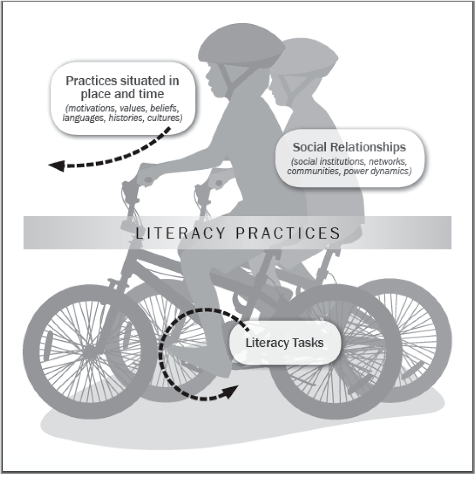 Figure 1 from The Health Literacy of U S  Immigrant