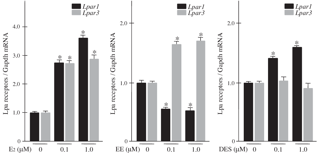 Fig. 3. Expression levels of Lpar1 and Lpar3 gene mRNAs relative to Gapdh mRNA in WB-F344 cells treated with E2, EE and DES for 48 h. Columns indicate the mean of three studies. Bars indicate SD. ⁄p < 0.01 vs. untreated (control) cells.