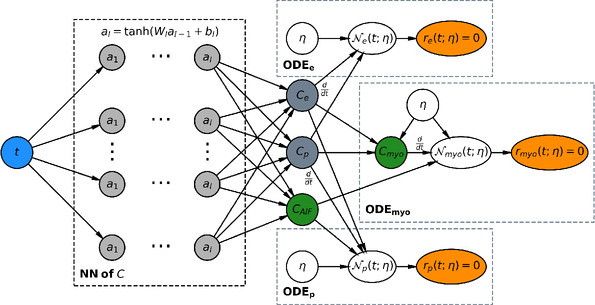Figure 1 for Physics-informed neural networks for myocardial perfusion MRI quantification
