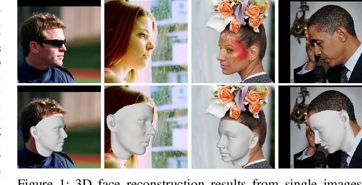 Figure 1 for Adaptive 3D Face Reconstruction from a Single Image