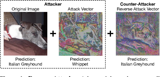 Figure 1 for Adversarial Attacks are Reversible with Natural Supervision