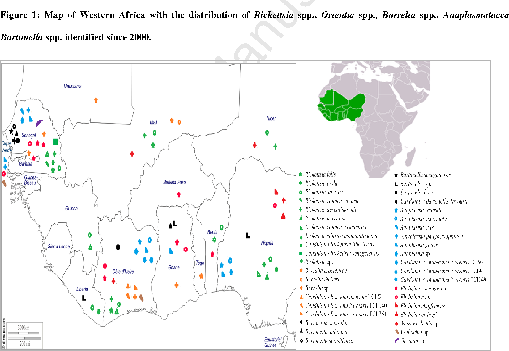 Figure 1 from bacterial arthropod borne diseases in west africa figure 1 map of western africa with the distribution of rickettsia spp orientia ccuart Images