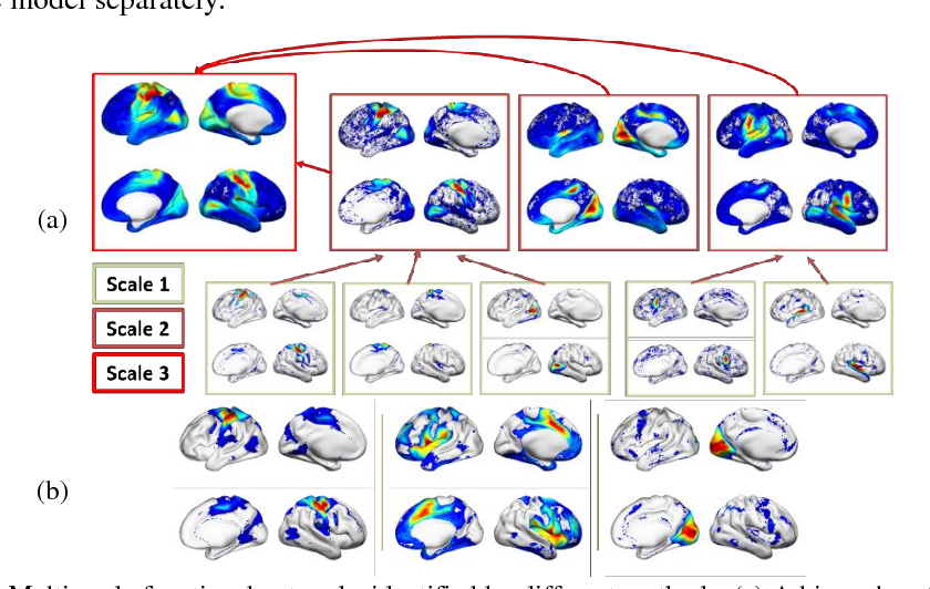 Figure 2 for Identification of multi-scale hierarchical brain functional networks using deep matrix factorization