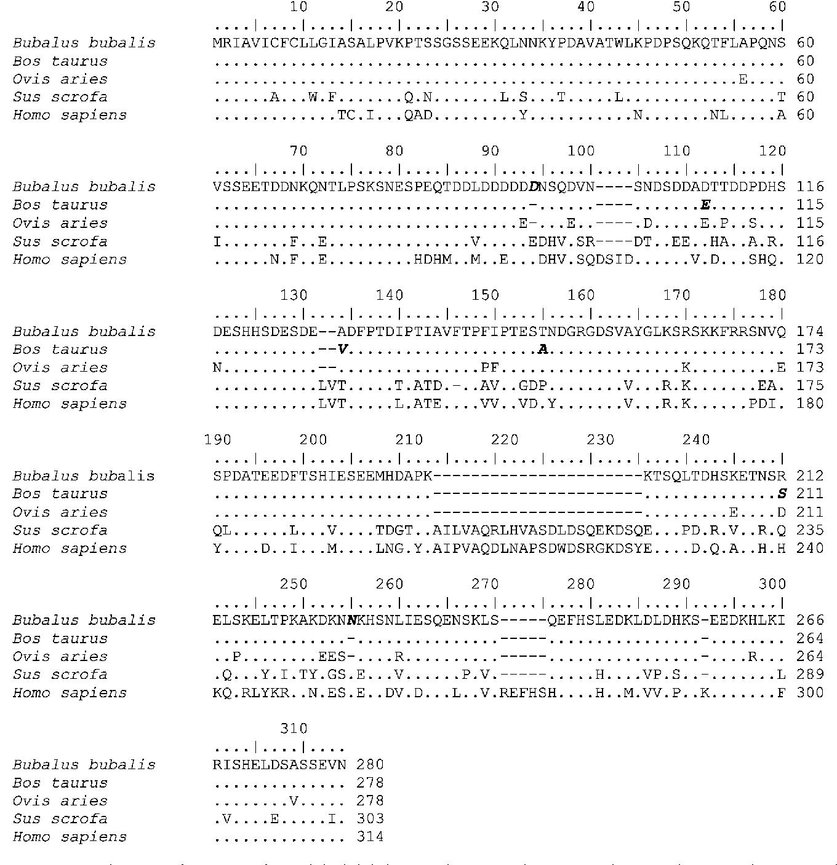 PDF] Characterization of Osteopontin gene of Bubalus bubalis