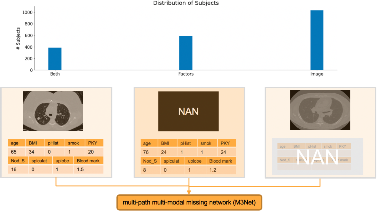 Figure 1 for Deep Multi-path Network Integrating Incomplete Biomarker and Chest CT Data for Evaluating Lung Cancer Risk