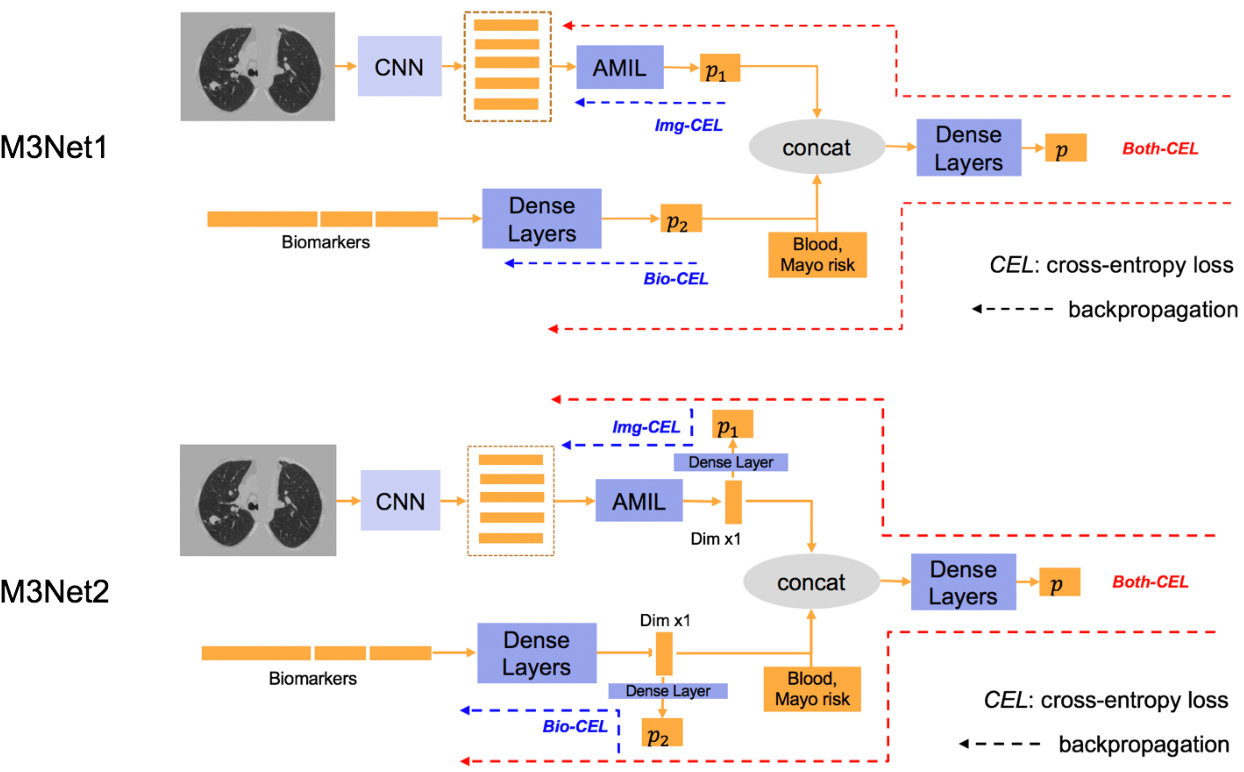 Figure 3 for Deep Multi-path Network Integrating Incomplete Biomarker and Chest CT Data for Evaluating Lung Cancer Risk