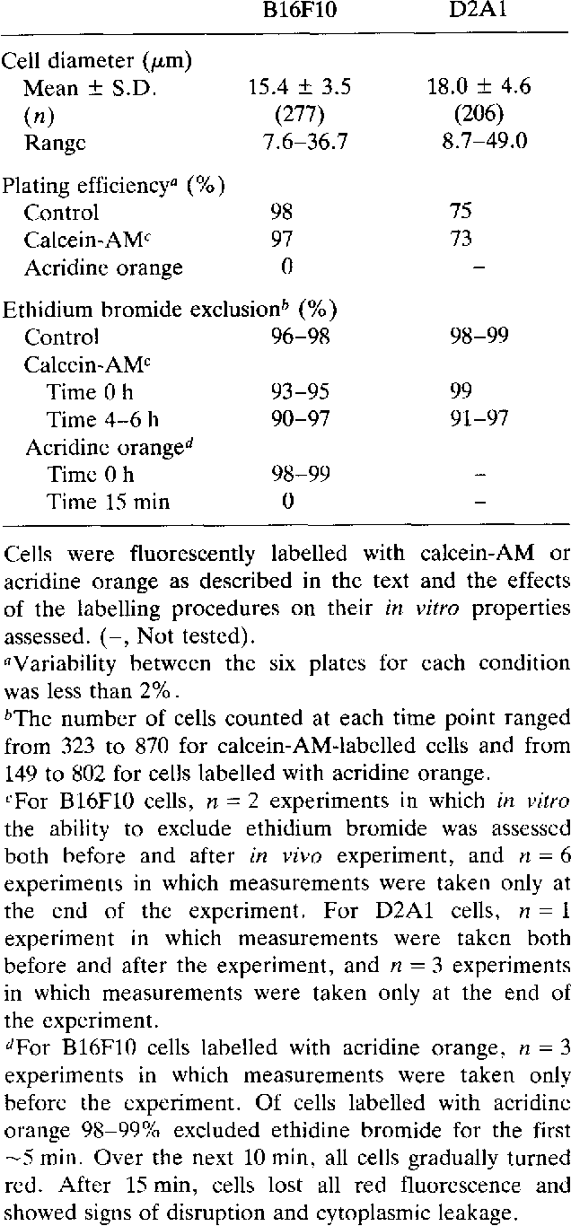 Table 1. In vitro properties of fluorescently labelled cells