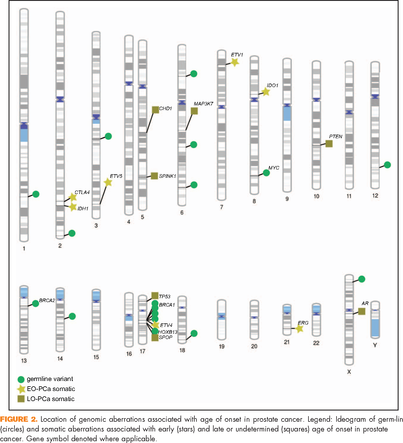 Figure 2 From Genomes Of Early Onset Prostate Cancer Semantic Scholar
