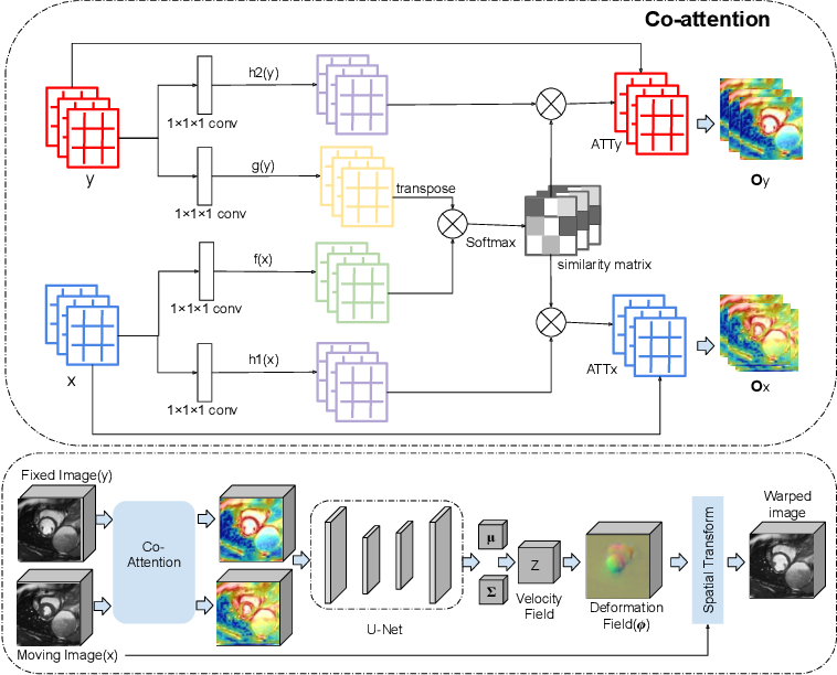 Figure 1 for CAR-Net: Unsupervised Co-Attention Guided Registration Network for Joint Registration and Structure Learning