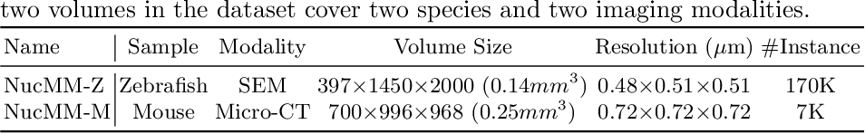 Figure 2 for NucMM Dataset: 3D Neuronal Nuclei Instance Segmentation at Sub-Cubic Millimeter Scale
