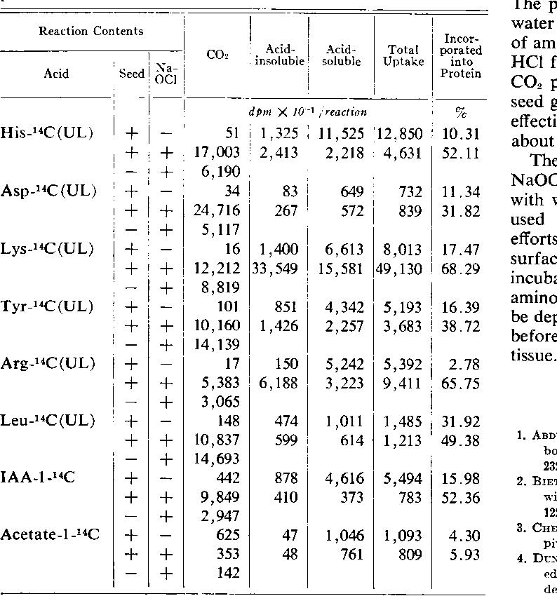 Table III. Effect of NaOCI o)t Decarboxylation, Uptake, and Incorporation of Aminio Acids, IAA, anid Acetate inito Proteini