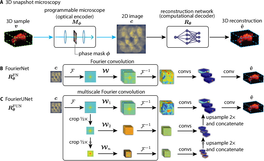 Figure 1 for Programmable 3D snapshot microscopy with Fourier convolutional networks