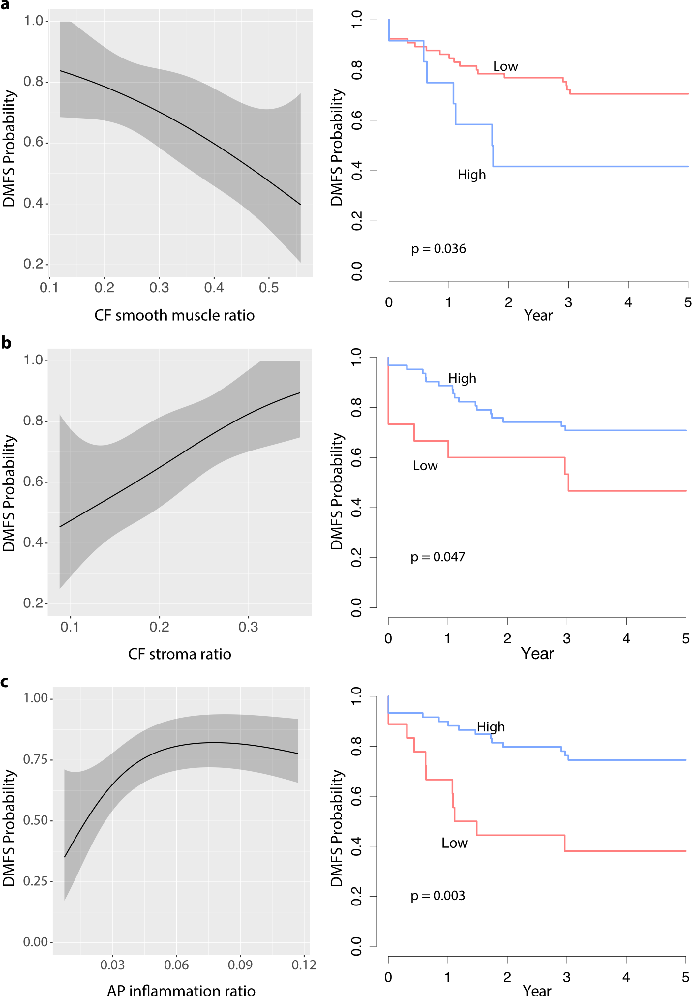 Figure 4 for Novel digital tissue phenotypic signatures of distant metastasis in colorectal cancer