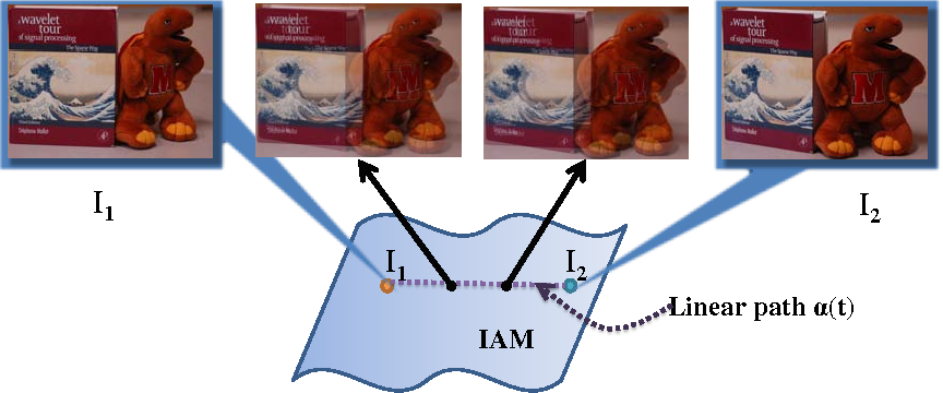 Figure 1 for A Theory for Optical flow-based Transport on Image Manifolds