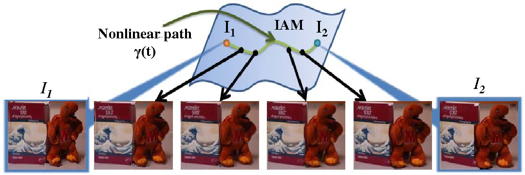 Figure 3 for A Theory for Optical flow-based Transport on Image Manifolds