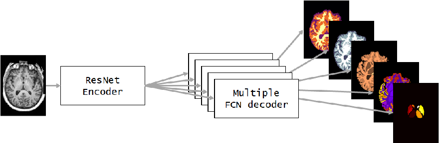 Figure 3 for NeuroNet: Fast and Robust Reproduction of Multiple Brain Image Segmentation Pipelines