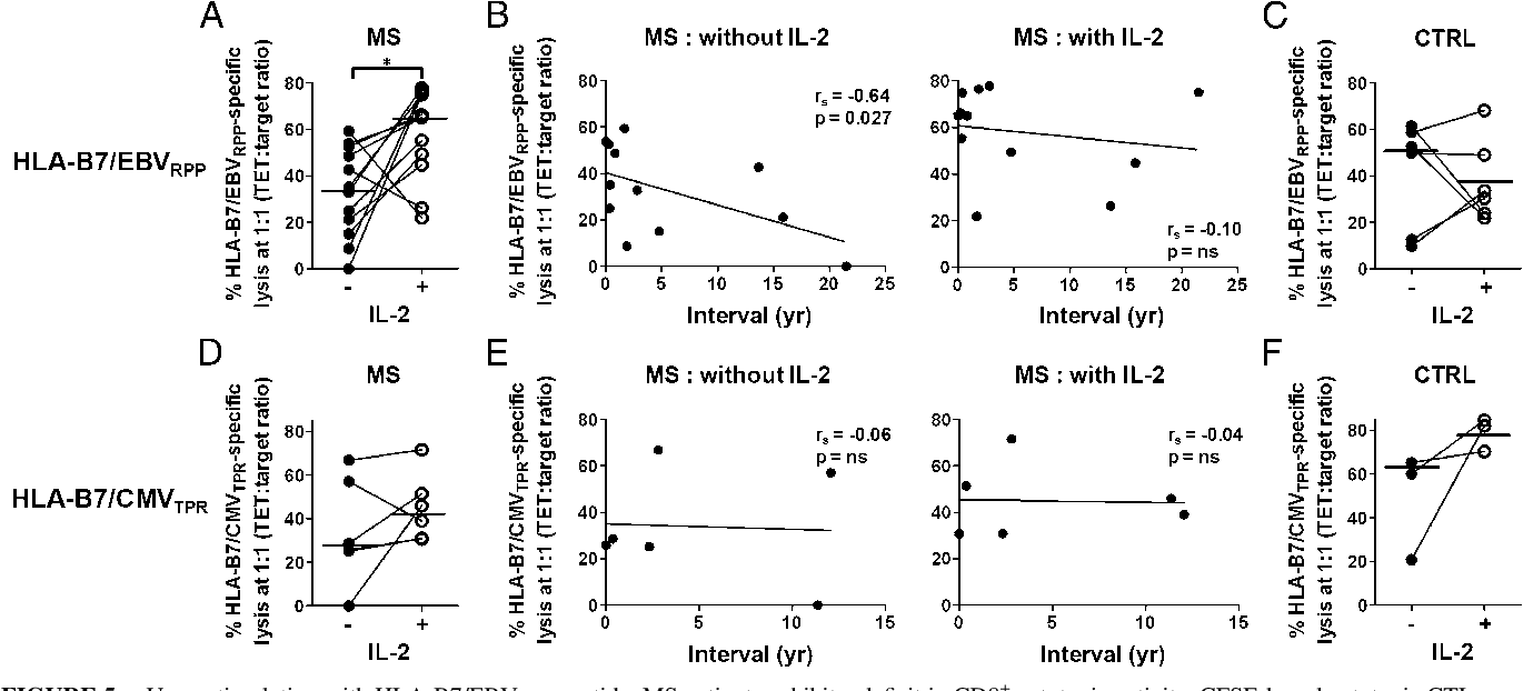 FIGURE 5. Upon stimulation with HLA-B7/EBVRPP peptide, MS patients exhibit a deficit in CD8 + cytotoxic activity. CFSE-based cytotoxic CTL assay of HLA-B7/EBVRPP–specific CD8 + T cells in the absence or presence of rhIL-2 in MS patients (A) or control subjects (C). (B) In the absence of rhIL-2, HLA-B7/EBVRPP–specific CD8 + T cell cytotoxicity is inversely correlated with MS duration (left panel); however, such a correlation is lost when cells are cultured in the presence of rhIL-2 (right panel). Similar experiments were performed for HLA-B7/CMVTPR–specific CD8 + T cells in MS patients (D) and control subjects (F). (E) Absence of correlation of HLA-B7/CMVTPR–specific CD8 + T cell cytotoxicity with MS disease duration. Each symbol represents one subject; horizontal lines represent the median. *p , 0.05. CTRL, Control subjects; MS, MS patients; yr, years.