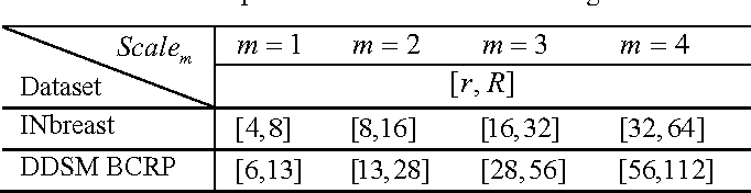 Table 1. The DSE pairs used in the Multi-scale Segmentation.