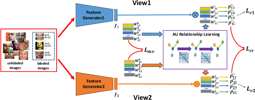 Figure 3 for Multi-label Co-regularization for Semi-supervised Facial Action Unit Recognition