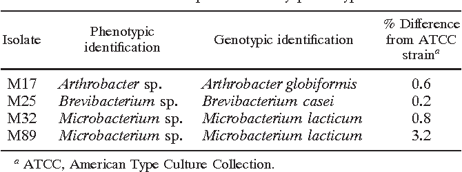 TABLE 2. Species identification by 16S sequencing of gram-positive bacilli not identified to species level by phenotypic methods