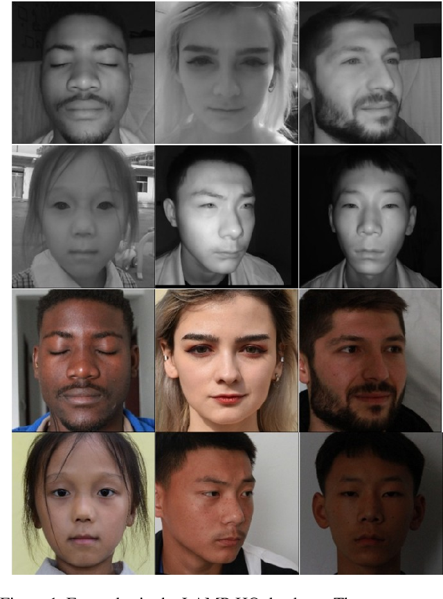 Figure 1 for LAMP-HQ: A Large-Scale Multi-Pose High-Quality Database for NIR-VIS Face Recognition
