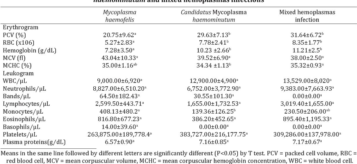 Table 3. hematology of animals infected by Mycoplasma haemofelis, Candidatus Mycoplasma haemominutum and mixed hemoplasmas infections