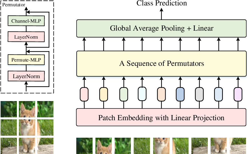 Figure 1 for Vision Permutator: A Permutable MLP-Like Architecture for Visual Recognition